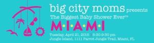 Biggest Baby Shower Miami
