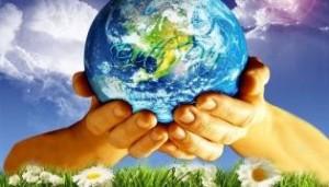 Daggerwing Earth Day